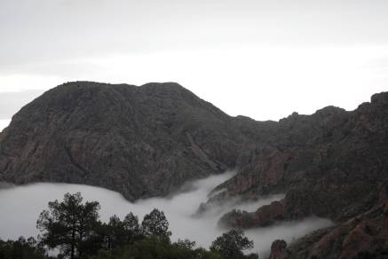 Up into the Chisos as fog blankets the basin