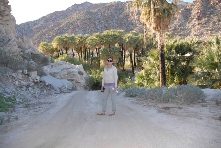 You're doing something right when you find a spray of fifty foot palms in the desert.