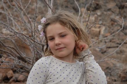 A little desert flower.