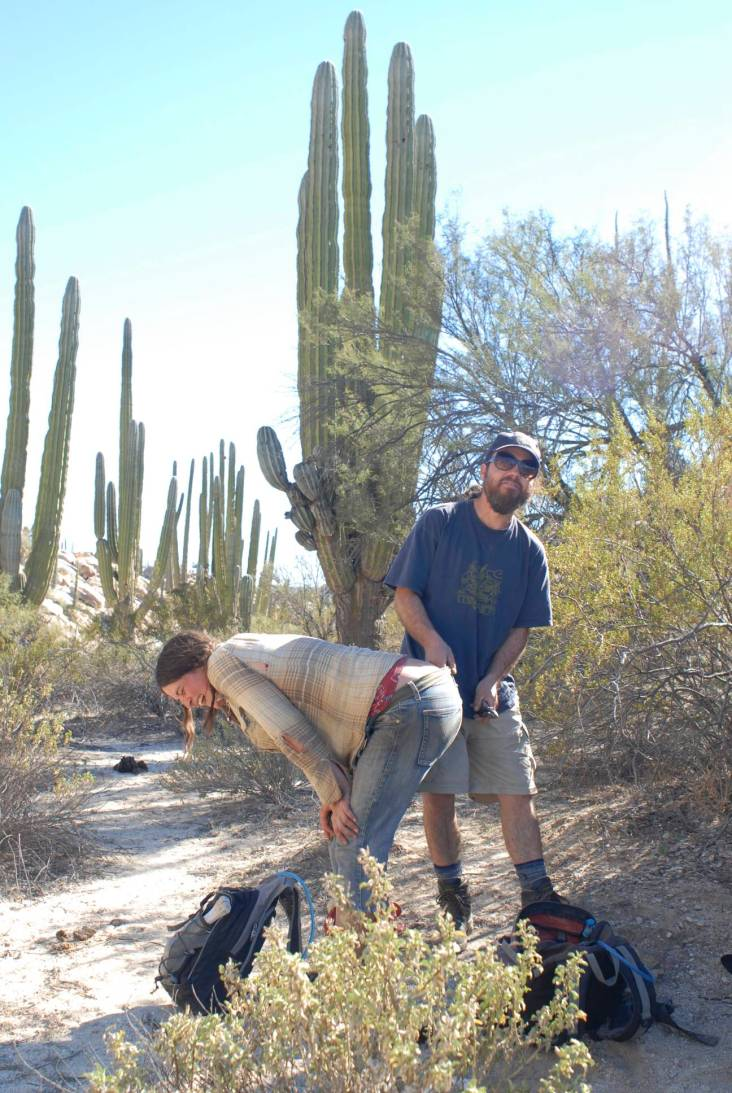 Feral, displaying proper cactus thorn removal etiquette after a botched seating job by Stephanie.