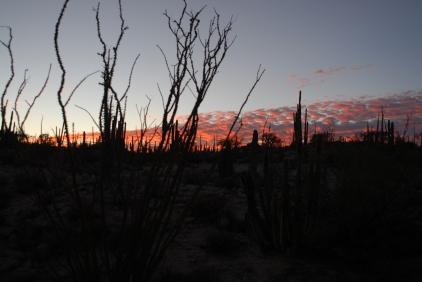 Sunset, Catavina.