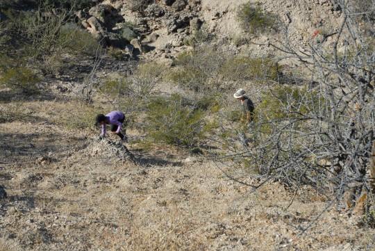 Leonie and Val scramble up a ridge