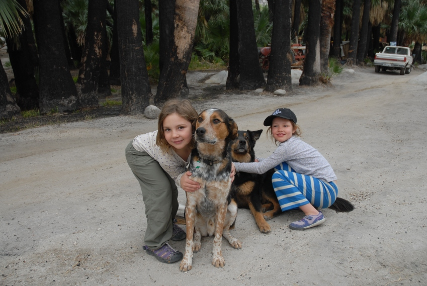 This is how we first met Jim and Julie - the girls seen here tackling their dogs in Baja