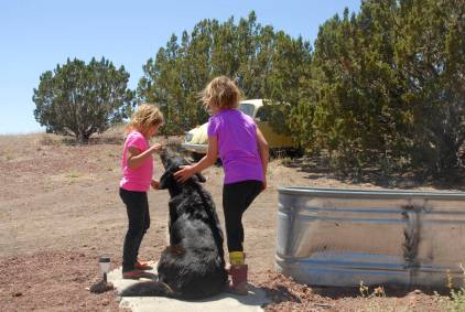 The girls making fast friends with Rosie, a local hound, just outside the guest room.