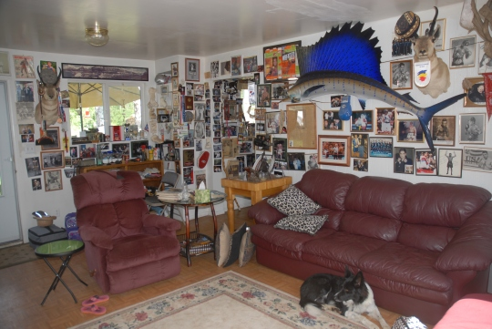 Interior of the Man Room in the cabin. Fish, dogs, and pictures of just about every Olympic boxer for the past couple decades.