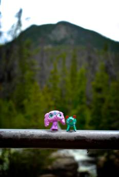 Don Puerco, our Mexican road pig, seen here on a hike in the Rockies with Starla.