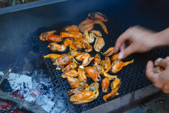 The salted mussels are laid out in the smoker, away from the coals.