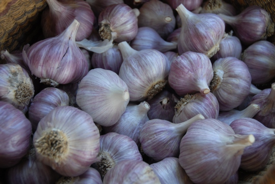 And there's also a lot of gorgeous, fresh garlic.